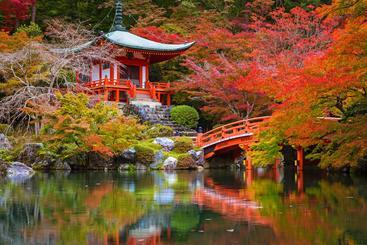 日本 京都 Kyoto Japan