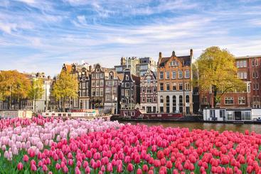 荷兰 阿姆斯特丹 Amsterdam Netherlands