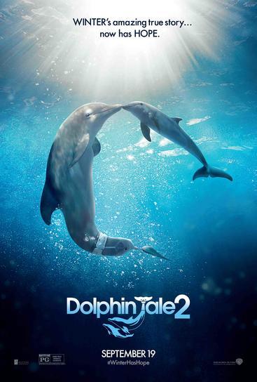 海豚的故事2 Dolphin Tale 2 (2014)