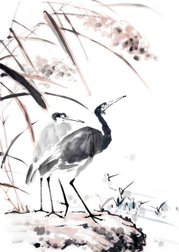 水墨画 鸟 Ink-wash painting of bird