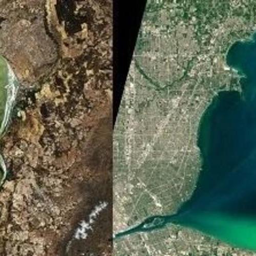 Nature:全球范围内湖泊浮游植物大量繁殖,藻华形势严峻