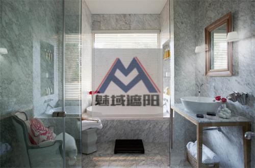 卫生间百叶帘,上海魅域智能遮阳技术有限公司