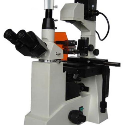 电脑荧光显微镜BM-38XD