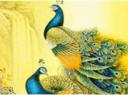 十二生肖动物装饰画风水有哪些?