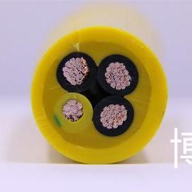 耐生物油机械油电缆