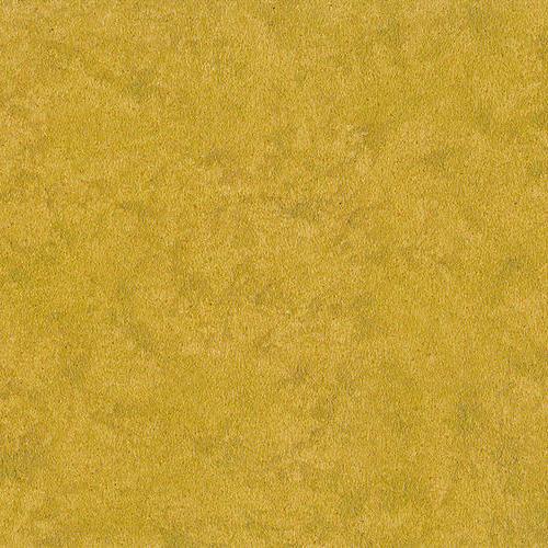 金箔H01