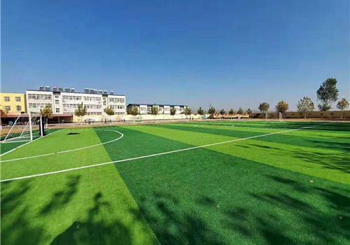 上海嘉定区人造草坪
