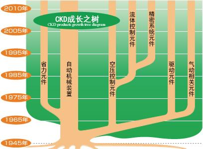 CKD成长之树