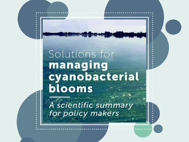 PHOSLOCK | 来自联合国教科文组织的力荐:蓝绿藻水华防治方法 —— 供决策者参考的技术总结