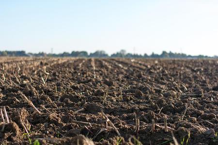 生态环境部召开例会,土壤生态保护将有大动作