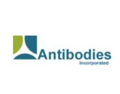 antibodies.png