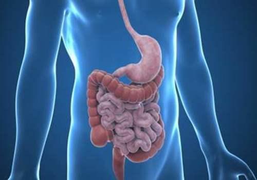 直肠病变PETCT检查案例