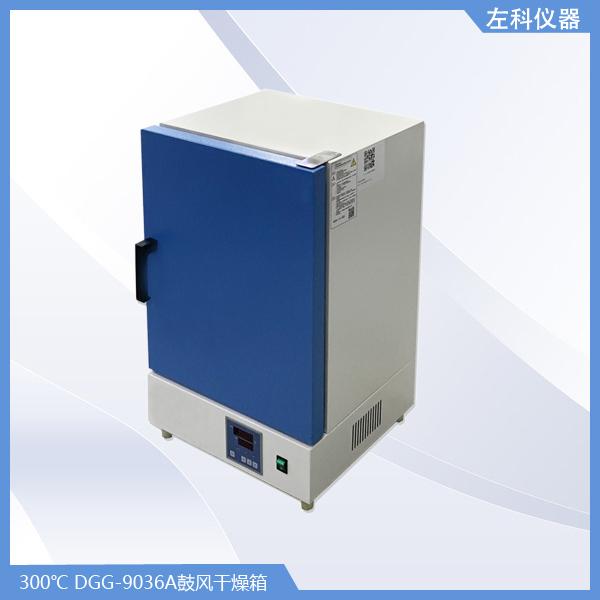 DGG-9036A鼓风干燥箱.jpg