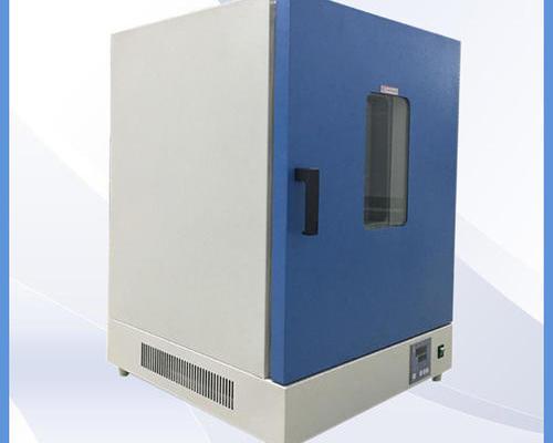 DGG-9246A 300℃立式鼓风干燥箱
