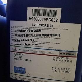 EV 95.jpg