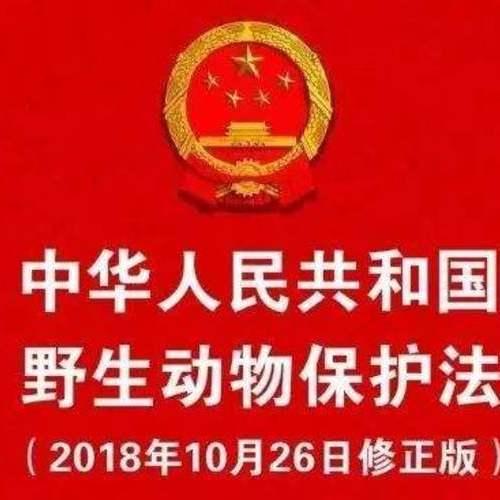 《中华人民共和国妇女权益保障法(2018修正)》