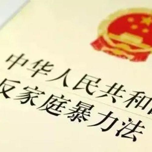 《中华人民共和国反家庭暴力法》