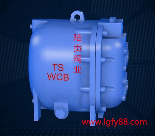 自动疏水阀泵图片