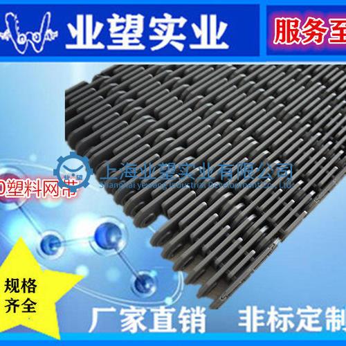 2000凸肋型塑料网带