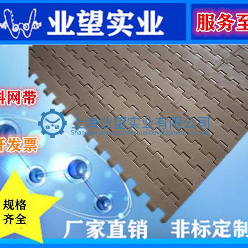 5935平板型塑料网带
