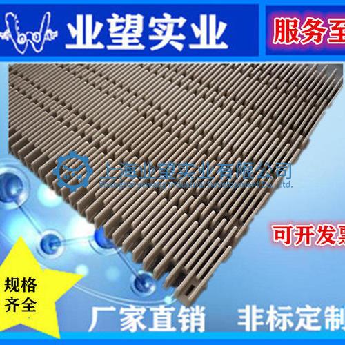 4809突肋塑料网带