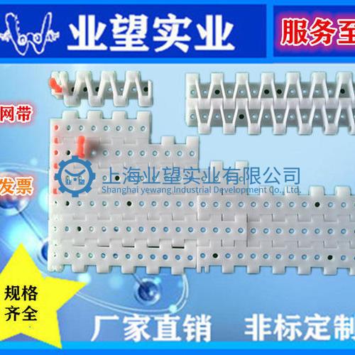 5935真空平板型塑料网带