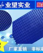 2120平板型塑料网带