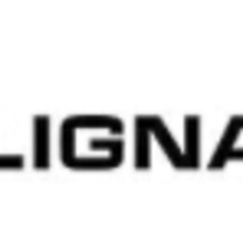 2021年5月德国汉诺威国际木工机械展览会 LIGNA
