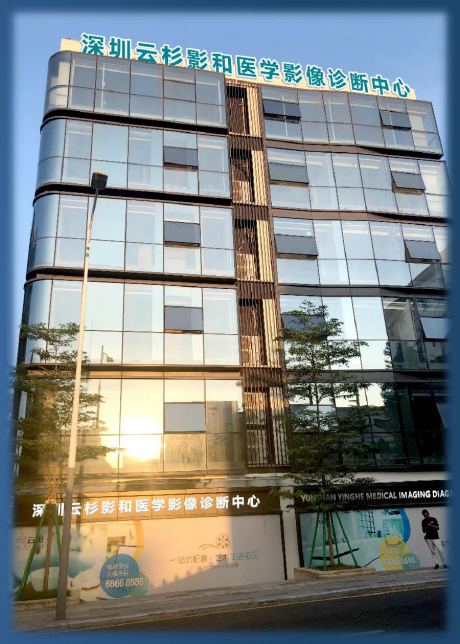 深圳云杉.png