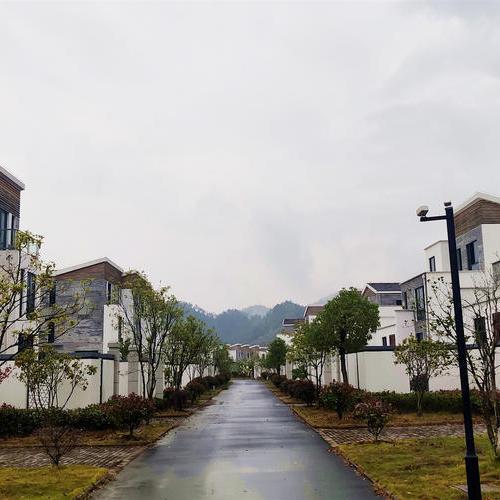 上河徽院·龍悅府-別墅