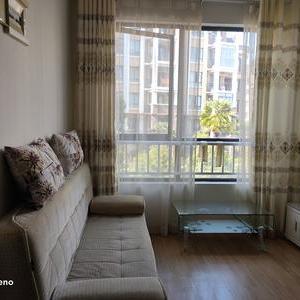 納尼亞小鎮  單身公寓  押一付三 半年起租