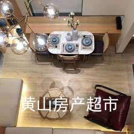 遠洋·桃花島-公寓Loft 投資/自住/辦公