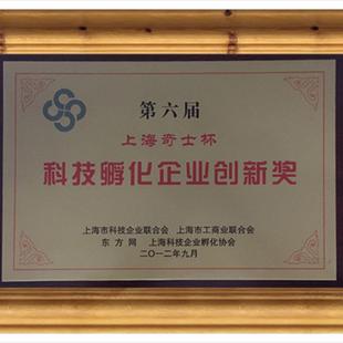 上海市科技孵化创新奖