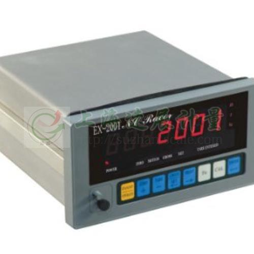EX2001控制仪表