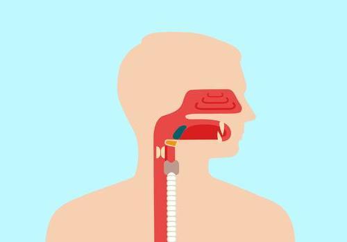 招募复发或转移鼻咽癌患者