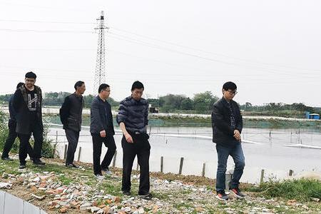 泰緣人江蘇行,春風十里不如一次實地走訪