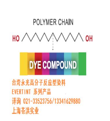 台湾永光聚氨酯反应型染料产品行销资料展示