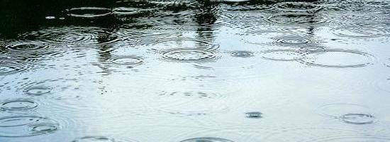 """大半個中國雨水""""不斷線"""",持續大雨、暴雨天氣,養殖戶如何應對?"""