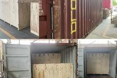 The Collector Exported To Colombia