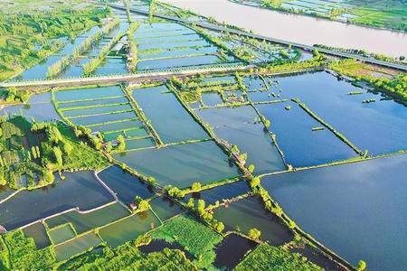 水产养殖步入生产旺季,这份养殖病害预测预报请查收