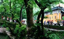 天台山旅游风景区