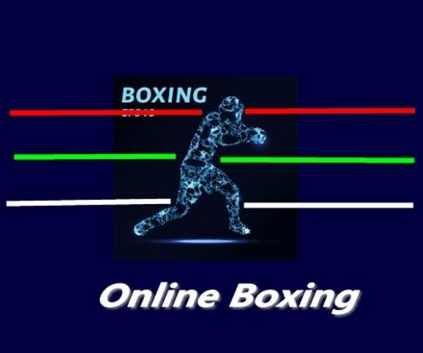2020美东首届网络拳击邀请赛成绩公告