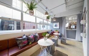 用植物如何创意装饰办公室?