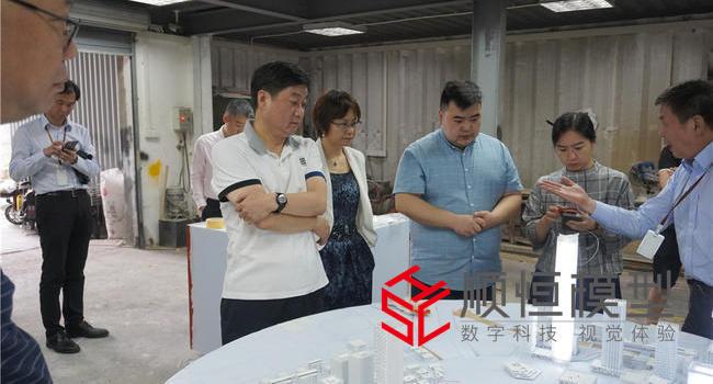 上海市政府领导莅临参观公司项目并提出指导意见