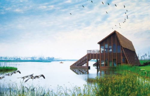 上海東灘濕地公園