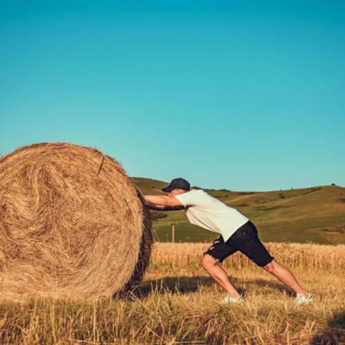 """泰缘秸秆综合利用技术,让田间地头的废弃秸秆变成了""""香饽饽"""""""