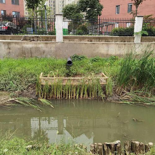 厉害!泰缘生态水处理技术,攻克平安支沟黑臭老大难
