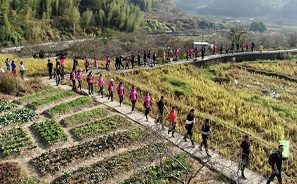 上海户外拓展公司拓展训练项目有哪些?