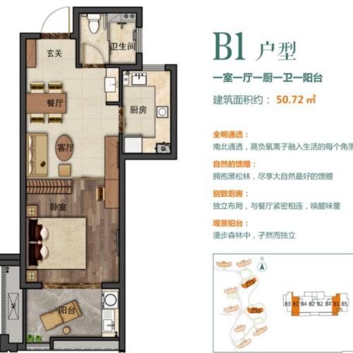 龍駿家園50.72m2