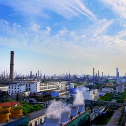 金山石化总厂